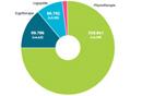Barmer GEK Heil- und Hilfsmittelreport 2014
